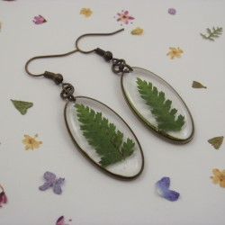 Fern Earrings Bronze