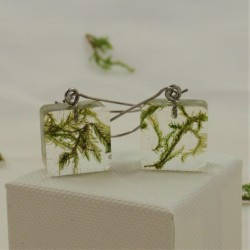 Moss Cube Earrings