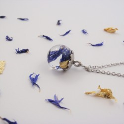 Blue and Gold Cornflower...