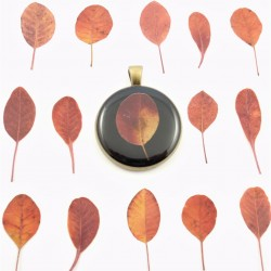 Smoketree Necklace