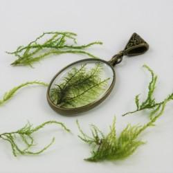 Moss Vintage Necklace